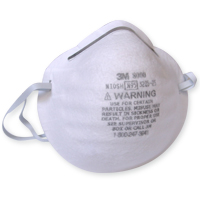 Dust Masks (20 Count)